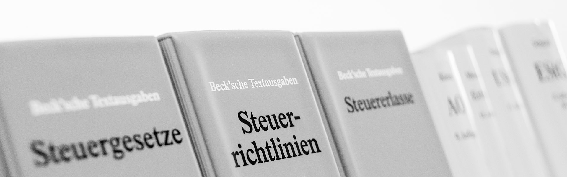 AUGUSTIN & PARTNER mbB Steuerberater Wirtschaftsprüfer